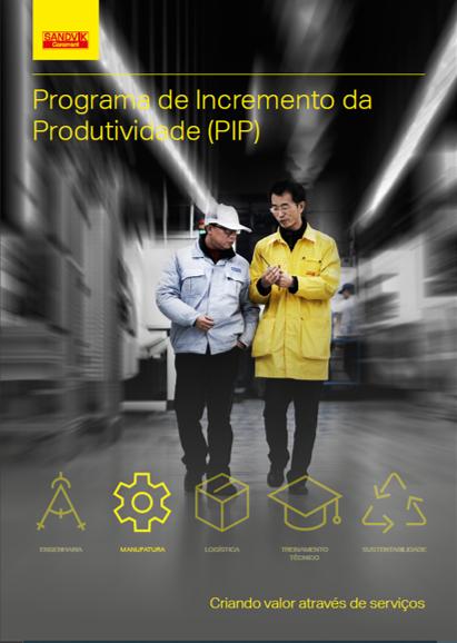 Programa de Incremento da Produtividade – PIP